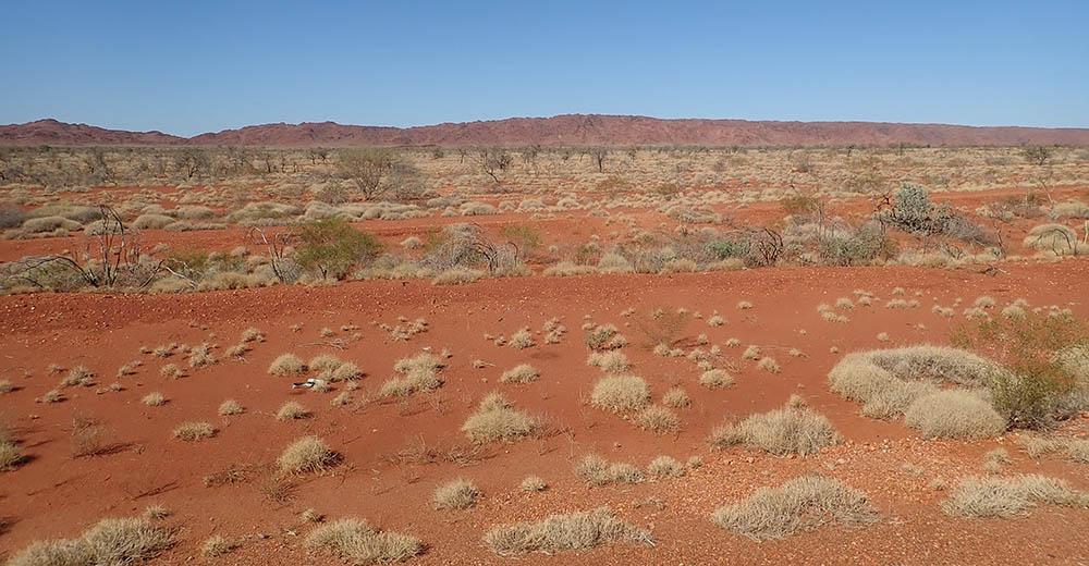 red sand of desert