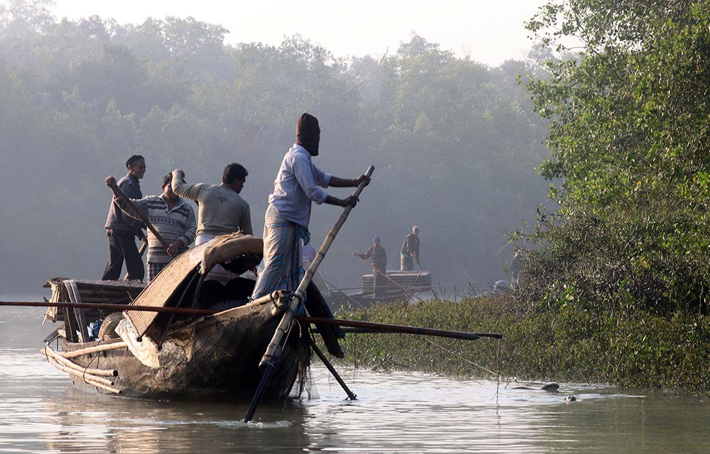 Fishing with otters in the Sundarbans, Bangladesh (image by Damon Ramsey)
